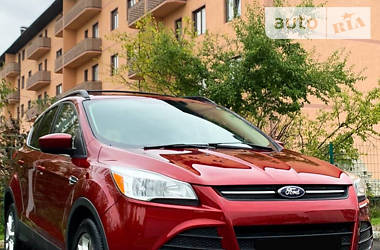 Ford Escape 2012 в Радивилове