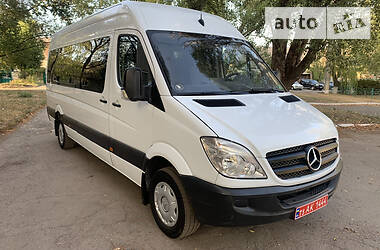 Mercedes-Benz Sprinter 313 пасс. 2010 в Кривом Роге