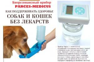 Товары для ухода и гигиены для животных
