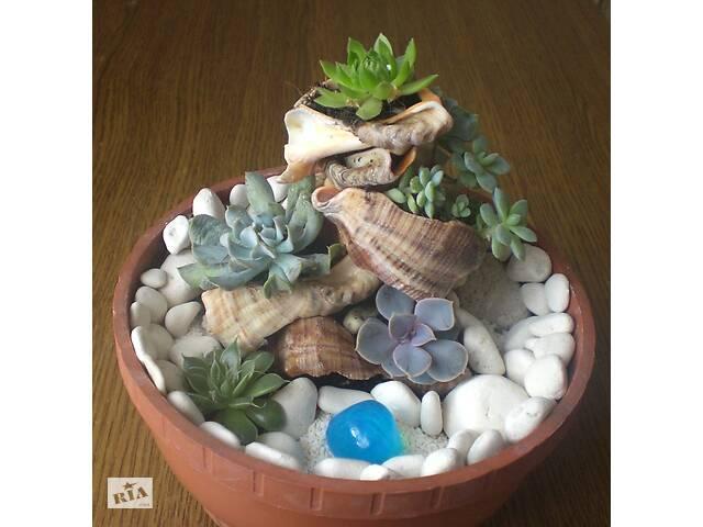 продам Каскад - композиції і декор із живих рослин бу в Тернополі