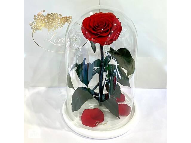 продам Красная роза в колбе Lerosh - Lux 33 см на белой подставке SKL15-279529 бу в Харькове