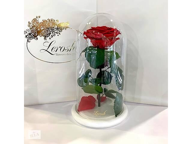 Красная роза в колбе Lerosh - Premium 27 см на белой подставке SKL15-279564- объявление о продаже  в Харькове