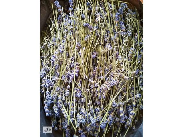 купить бу Лаванда, сухие цветы в Днепре (Днепропетровск)