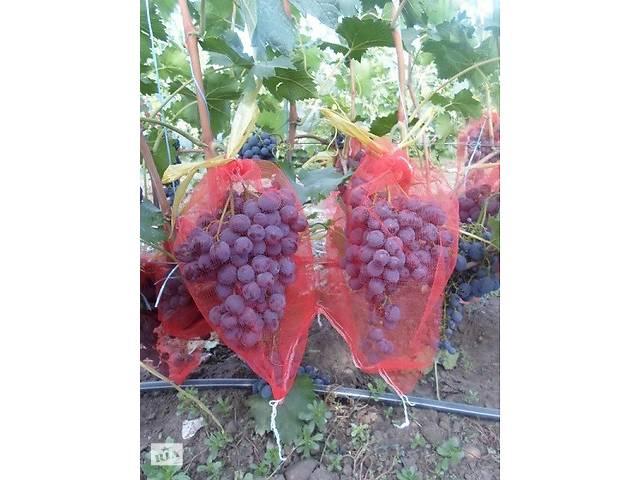 бу Мешочки для защиты винограда от ос и птиц в Одессе