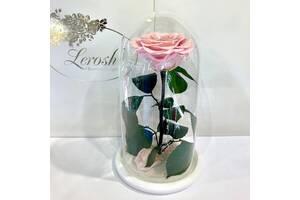 Розовая Жемчужная роза в колбе Lerosh - Premium 27 см SKL15-279553