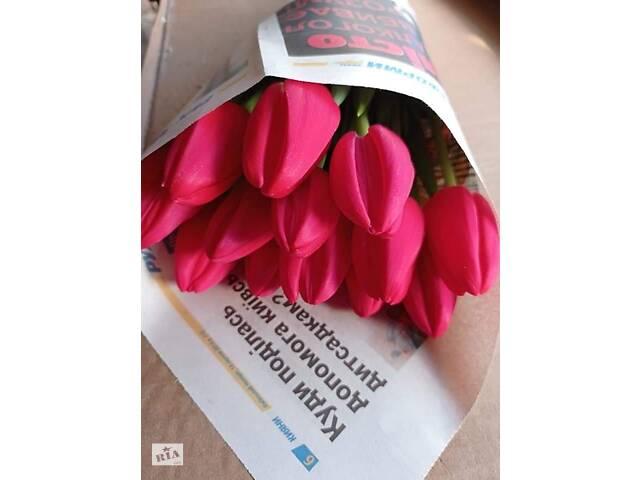 купить бу Тюльпан свежий срез к 8 марта ОПТ в Переяславе-Хмельницком