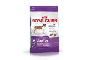 Сухий корм для собак Royal Canin