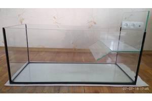 Креветки, улитки, крабы, черепахи для аквариумов