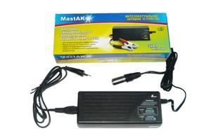 ЗУ MastAK 24V для інвалідної техніки