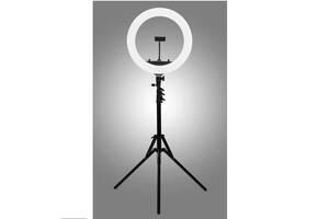 Кільцева світлодіодна лампа Ring Light HQ-18 55W