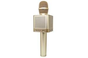 Беспроводной микрофон караоке Kronos MicGeek Bluetooth колонка Q10 Золотой (par_q-10)