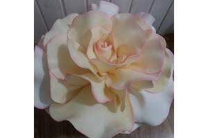 Нічник троянда Софі Лорен
