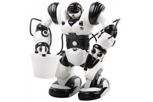 Робот TT313 Roboactor
