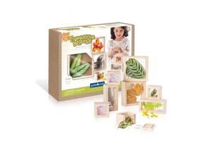 Игровой набор блоков Guidecraft Natural Play Сокровища в прозрачных ящиках (G3084)
