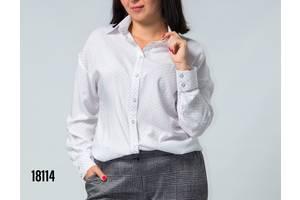 2946f0e1131 Блузы  купить Блузу недорого или продам Блузку дешево на RIA