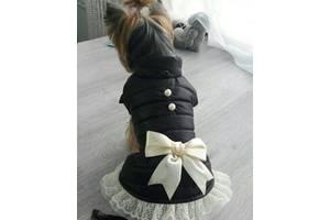 Куртки, пальто для собак