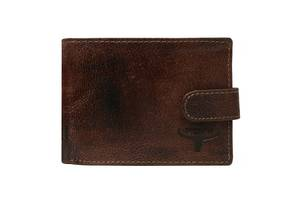 Мужское кожаное портмоне ALWAYS WILD N992LCHHP коричневое