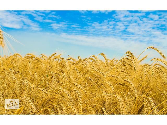 Увеличение банка земли крупным с\х предприятиям- объявление о продаже  в Днепропетровской области