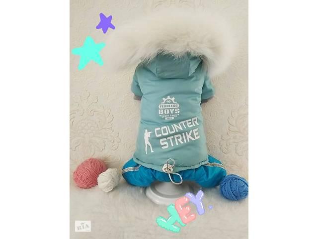 Зимняя одежда для собачек мальчиков- объявление о продаже  в Николаеве