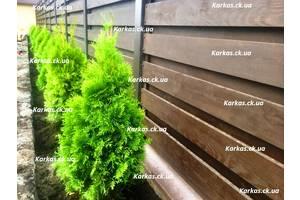 Уход за участком, садовник, озеленение, газон, уход и восстановление газонов, формовка растений
