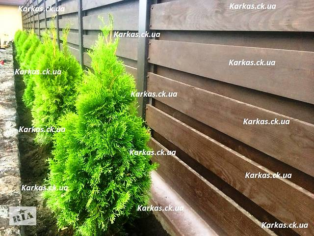бу Уход за участком, садовник, озеленение, газон, уход и восстановление газонов, формовка растений в Черкассах