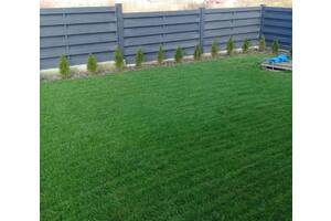Укладка рулонного газону - 55 грн/м2