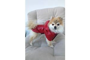 Плащ дощовик для собачок Dogs Bomba