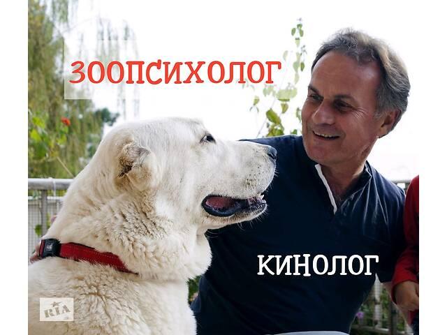 продам Профессиональная дрессировка собак. Выезд на дом. Онлайн-консультации по воспитанию, дрессировке и коррекции поведения бу  в Украине