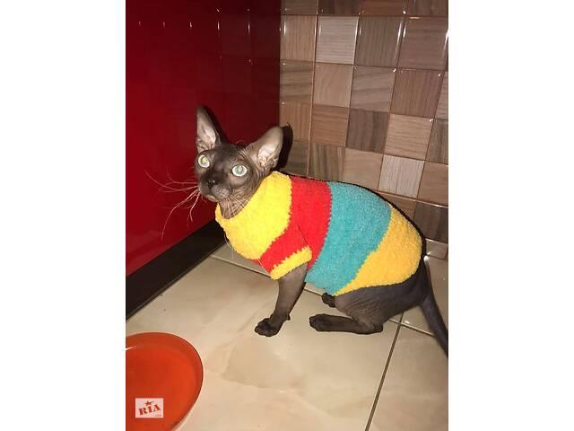 купить бу Вязаная одежда для кошек и собак) в Днепре (Днепропетровск)
