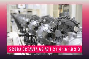 ТОП КПП Skoda Octavia A5 A7 TDI TSI 1. 2 1. 4 1. 6 1. 8 1. 9 2. 0 Октавия Коробка передач 1,2 1,4 1,6 1,9 2,0 Мкпп