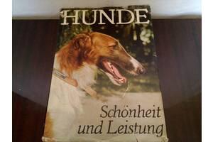 """Немецкий альбом """"Собаки""""."""