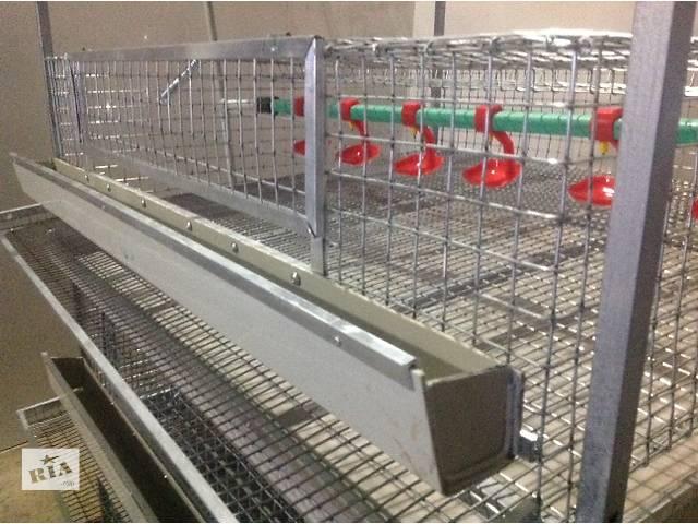 купить бу клетка для перепелов в Запорожье