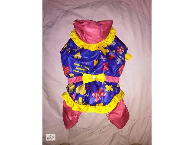 бу Комбинезон для собачки-девочки, одежда, костюм, комбенизон в Полтаве