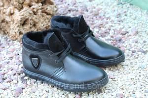 Стильні чоловічі зимові черевики натур шкіра Falcon - Чоловіче ... ec312fac66176