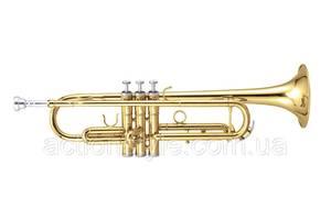 Новые Духовые инструменты Maxtone