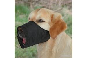 Ремені для собак