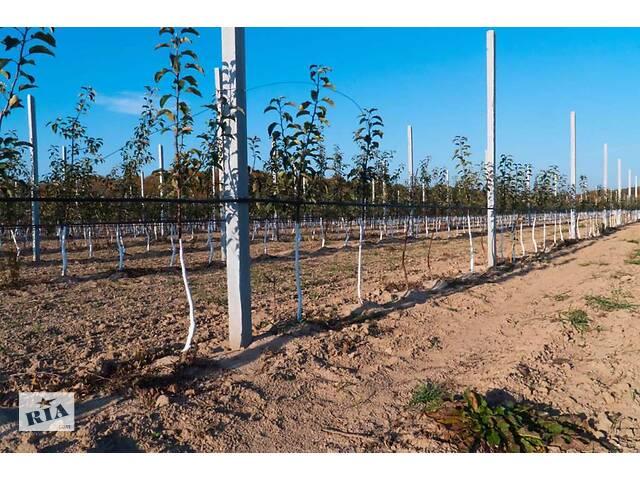 продам Продам бетонные столбики для садов и виноградников бу в Виннице