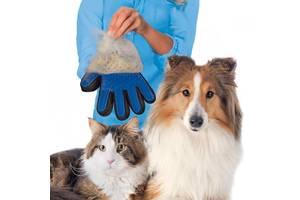 Аксесуари для тварин