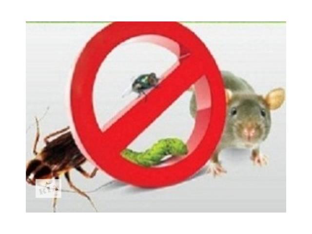 бу услуги уничтожения грызунов, тараканов. в Виннице