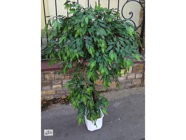 продам искусственное дерево Фикус мелкий зеленый лист- объявление о продаже  в Хмельницькому