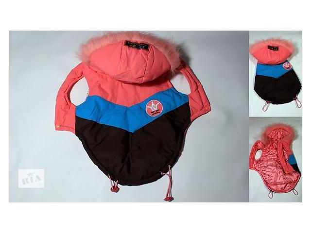 купить бу Продам одежду для собак  в Харькове