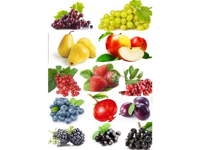 бу Натуральные фруктово-ягодные концентрированные соки в Киеве