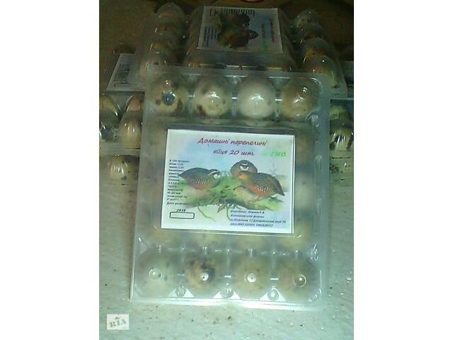 купить бу Перепелинi яйця в Коломые