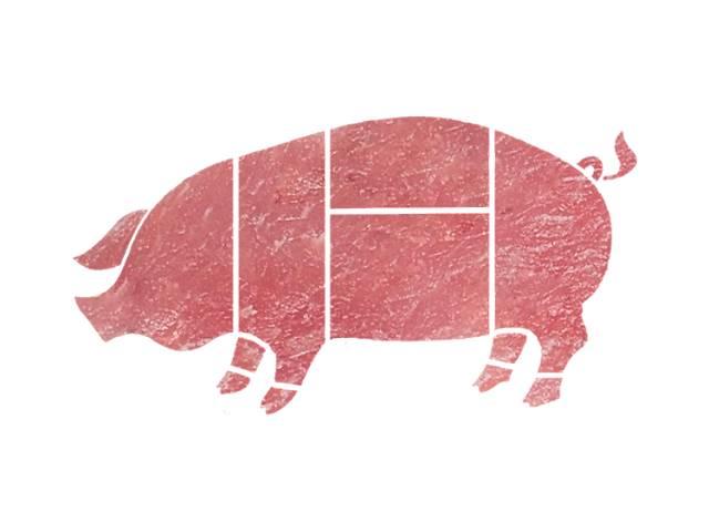 Продам домашнюю свинью на м'ясо- объявление о продаже  в Теребовле