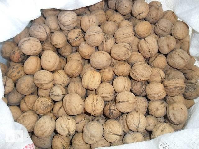 продам Продам грецкие орехи со своего сада - 70 кг. бу в Прилуках
