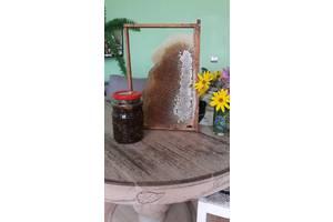 Продам мед гірський натуральний