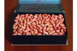 Продам посадковий матеріал арахісу, посадочный материал арахиса