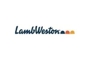 Сухое картофельное пюре, хлопья Lamb Weston (Нідерланди)
