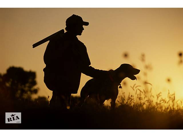 бу Регистрируем собак с выдачей охотничьего паспорта в Харькове