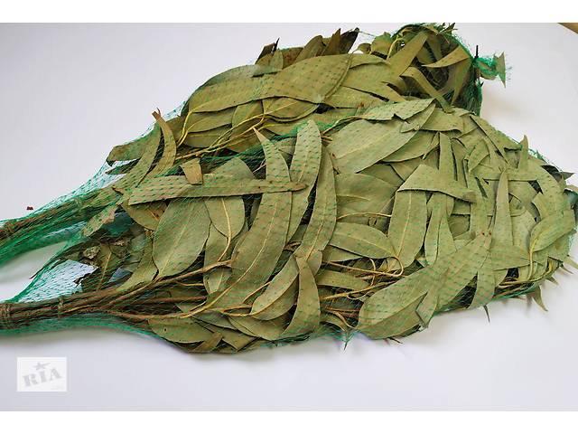 бу Веник для бани (эвкалипт) в упаковке Saunapro в Харкові